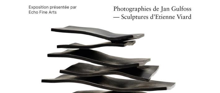 Exposition Echo Fine Art du 19 au 25 aout 2021